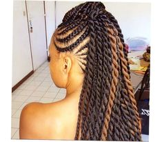 African American Braids Hairstyles 2014