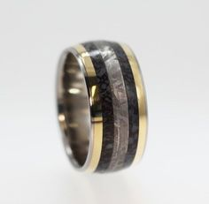 Dinosaur Bone ring Gibeon Meteorite ring and two 14K Gold Inlays - Signature Series