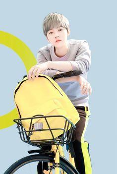 Luhan x ofo yellow bike