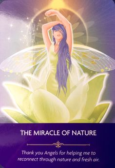 The Miracle of Nature Thank you Angels for helping me to reconnect through nature and fresh air. Kyle Gray, Spirit Signs, Angel Guidance, Angel Prayers, Oracle Tarot, Spiritual Power, Angel Cards, Angels In Heaven, Card Reading