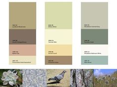 """""""Warm"""" paint colors  Google Image Result for http://beehivestudio.typepad.com/beehive_studio/images/2008/06/09/blog_20_nuance_paint_chips.jpg"""