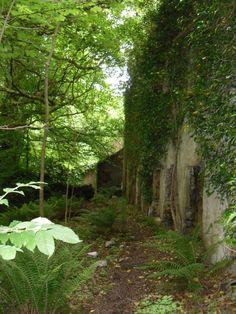 Castle Caldwell, Lower Lough Erne, Fermanagh, Northern Ireland