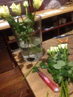 Stelle roser
