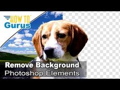 Photoshop Elements Beginner: Top Ten Things to Know Photoshop Elements Tutorial for Beginners - YouTube
