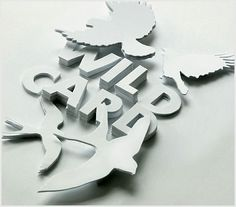 3d Typography Designs