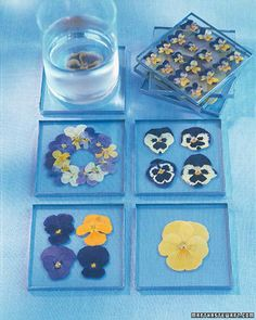 Colorful flowers floating between squares of glass make beautiful and useful coasters. Press the flowers yourself, or use pre-pressed blooms. Although we used pansies and violas, you can use any variety of pressed flowers or leaves you like; a collection of coasters is even more charming if each one is unique.Before you start, learn how-to Press Pansies.