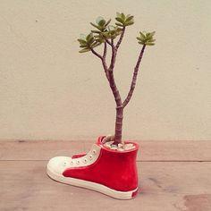 vasos criativos-zupi14