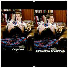 Dog bra killed me ahaha