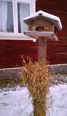 Birches, Winter Snow, Seas, Country Living, Holidays, Christmas, House, Home Decor, Country Life
