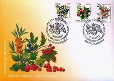 FDC Envelope MOLDOVA, Fruiting Shrubs, 2013