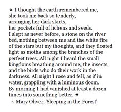 Mary Oliver - sleeping in the forest Favorite. Pretty Words, Beautiful Words, Mary Oliver Poems, Journey, Poem Quotes, Wise Words, Favorite Quotes, Quotations, Lyrics