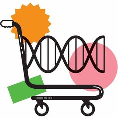With the rise of personalized approaches to nutrition, often based on genetic testing, broad standards seem less and less relevant.