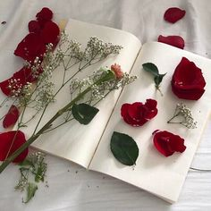 Imagem de flowers, rose, and beauty Aesthetic Colors, Aesthetic Images, White Aesthetic, Aesthetic Vintage, Aesthetic Photo, Aesthetic Wallpapers, Book Aesthetic, Les Winx, Colour Board