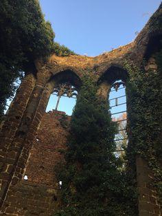 Ruine Sint Jansveld