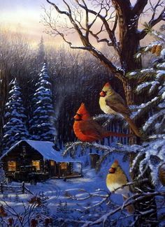Cardinals watch over this old time cabin, The wood is freshly cut in the back of the old pickup and the stove is burning hot. Spring is soon to come but not before winter makes its final impression on