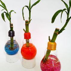 Solouno Bambú - Para los que buscan recordatorios de boda