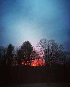#WonderWatch 2015-155 Sky Afire #sunrise #NewDay #nature #naturephotography #SandyLongPhotos #SeizeTheDay #GetOutside #UpperDelawareRiverRegion #NewYork #SullivanCountyNY #LemonsBrookFarm #ArtfulNature #beauty #BeTheLight #sky #dramatic #inspire #inspiration #light #skies #trees