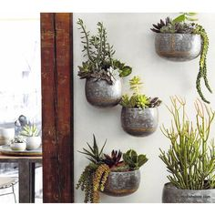 Roost Braza Wall Planters – Modish Store