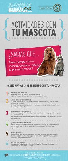 Aprovechar el tiempo de tu mascota mejora sus condiciones de salud y fortalece tu relación.