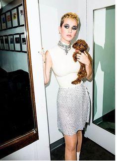 katy was altijd mijn grote voorbeeld haar muziek heeft me altijd geholpen en toen ze bij de billboards 2014 haar award voor vrouwelijke artiest van het jaar met mij deelde was ik echt geraakt en ik heb die award op mijn nacht kastje staan ik kijk echt op naar katy en elke keer als we afspreken of bellen voelt het alsof ik mijn idool voor het eerst echt ontmoet