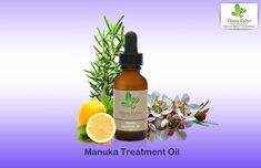 Stimulates cellular exchanges and improves intercellular material is an excellent source of vitamin E. The consistency is light and absorbs quickly Organic Skin Care Lines, Natural Skin Care, Organic Facial, Derma Roller, Beauty Tips For Face, Organic Essential Oils, Vitamin E, Just For You, Pure Products