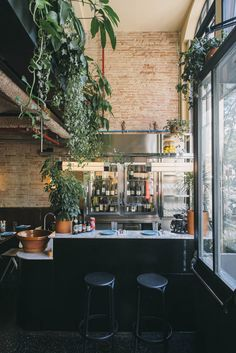 Elephant Crocodile Monkey: Estanislao Carenzo's ardour for the East makes for an incredibly special addition to Barcelona's culinary scene...
