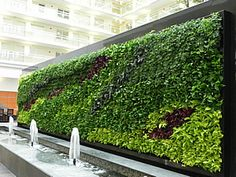 Embassy Suites Green Wall