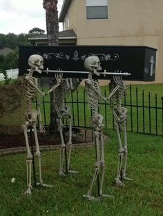 Skeletons  5