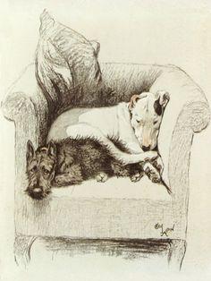 """""""Weight Will Tell"""" by Cecil Aldin, British artist, 1870-1935"""