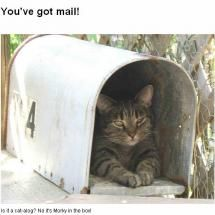 Waiting for the mailman at....