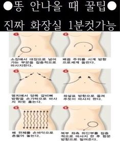 Pin by 마블쏭 junystyle on 말 Cat Exercise, Body Care, Life Is Good, Insight, Life Hacks, Massage, Infographic, Funny Memes, Health Fitness