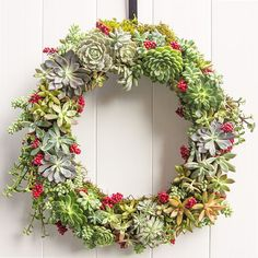 How to Make a Succulent Wreath for the Holidays