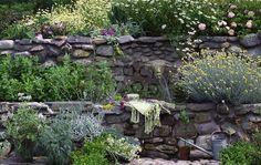 Rock wall, terraced garden