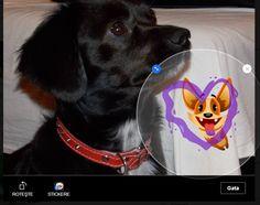 Adauga stickere peste pozele de pe facebook