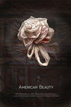 American Beauty by Stephanie Toole