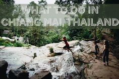 Things to do with kids in Chiang Mai, Thailand