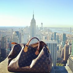 #louisvuitton #lv #speedy #purse