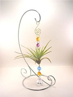 Items similar to Air Plant Ornament- Unique Natural Gift Multi Colored Air Plant Ornament Gifts For Her Air Plant Ornament- Unique Natural Gift Multi Colored Air Plant Ornament Gifts For Her Gifts under 20 via Etsy Plant Crafts, Wire Crafts, Garden Crafts, Unique Plants, Exotic Plants, House Plants Decor, Plant Decor, Terrarium, Hanging Air Plants