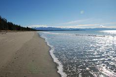 Rabbit Island Beach In Winter - Photo of Tasman New Zealand Hotels, Rabbit Island, Holiday Park, Hotel Motel, Island Beach, Swimming, Places, Winter, Outdoor