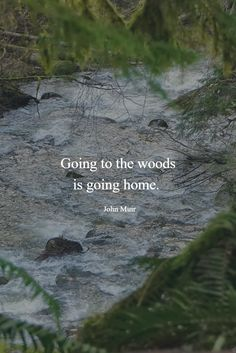 Going to the woods is going home. ~ John Muir Going to the woods is going home. ~ John Muir The post Going to the woods is going home. ~ John Muir appeared first on Pink Unicorn. Citations De John Muir, Citation Nature, John Muir Quotes, Into The Woods Quotes, Nature Quotes Adventure, Adventure Quotes Outdoor, Travel Quotes, Hiking Quotes, Quotes To Live By