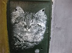 These breathtaking street art stencils are by Christian Guémy, A.K.A. C215. This French street stencil artist has been compared to Banksy, but he definitely has a style all is own. His work has shown up in Istanbul, Dakar, Brooklyn, Morocco, and New Delhi. He always works with images that relate to the local culture, and…