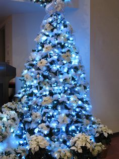 """""""960 LED cool white lights (use blue?) & plenty of Buffalo Snow....white poinsettias, silver and glittered icicles, silver and iridescent ornaments."""""""