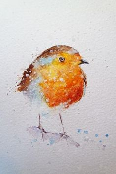 How to paint a robin in 8 easy steps.... – watercolours by rachel