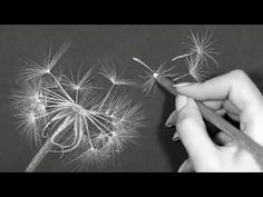 Easiest Drawing To Make On Black Paper //Hi! In this video I show you the easiest drawing to make on black paper. This time I draw a dan. Chalk Drawings, Easy Drawings, Pencil Drawings, Pencil Sketching, Realistic Drawings, Black And White Art Drawing, Black Paper Drawing, Charcoal Art, Charcoal Drawing