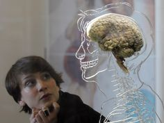 Free will #illusion? #Scientists suggest just #brain tricking itself...