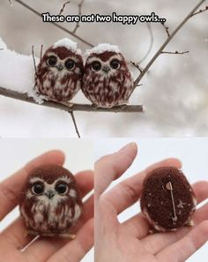 Two Owl Pins