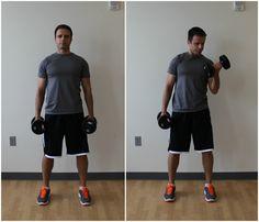 biceps curl dumbbell