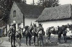 British yeomanry
