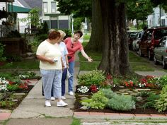 Parkstrips are also called hellstrips? I had no idea. But some great ideas of what to plant instead of grass and weeds!