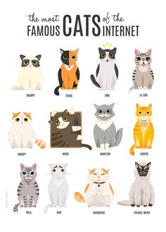 I Draw The Most Famous Cats On The Internet | Bored Panda